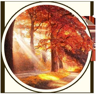 Блики огня на клинкерной брусчатке Рубин